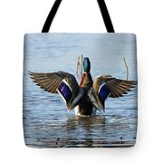 Male Mallard In Glorious Color  7515 Tote Bag