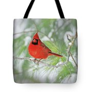 Male Northern Cardinal In Winter Tote Bag