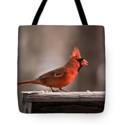 Male Northern Cardinal Winter New Jersey  Tote Bag