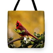 Male Northern Red Cardinal Tote Bag