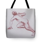 Male Nude 19 Tote Bag