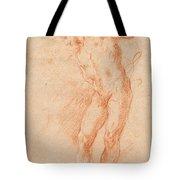 Male Nude [verso] Tote Bag