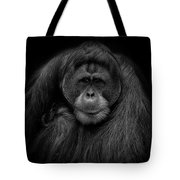 Male Orangutan Black And White Portrait Tote Bag