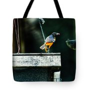 Male Oriole  Tote Bag