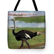 Male Ostrich Tote Bag