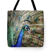 Male Peacock Displaying Tote Bag