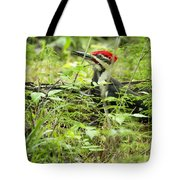 Male Pileated Woodpecker On The Ground No. 2 Tote Bag
