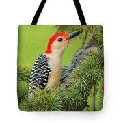 Male Red Bellied Woodpecker In A Tree Tote Bag