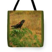 Male Red-winged Blackbird Singing Tote Bag