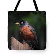 Male Robin Tote Bag