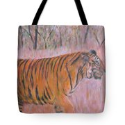 Adult Male Tiger Of India Striding At Sunset  Tote Bag