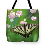 Male Tiger Swallowtail 5416 Tote Bag