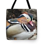 Male Wood-duck Tote Bag