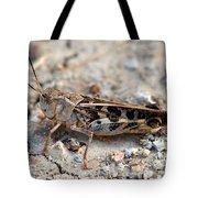 Male Wrinkled Grasshopper Tote Bag