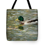 Mallard Among The Fallen Leaves Tote Bag