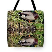 Mallard And Reflection Tote Bag