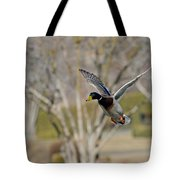 Mallard Approach Tote Bag
