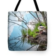 Mallard At Silver Lake Tote Bag