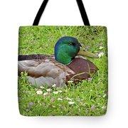 Mallard Drake In The Grass Tote Bag