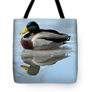 Mallard Duck Drake On Ice II Tote Bag