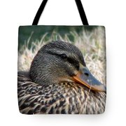 Mallard Female 2 Tote Bag