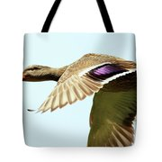 Mallard In Flight . 40d5450 Tote Bag
