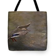 Mallard Landing On Thompson's Pond Tote Bag