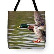 Mallard Landing Tote Bag