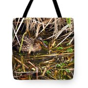 Mallard Mama With Duckling Tote Bag