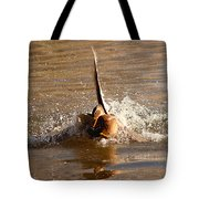 Mallard Mating Dance Tote Bag