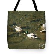 Mallards 1 Tote Bag