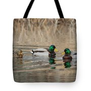 Mallards On The Pond Tote Bag