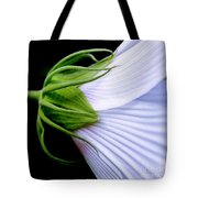 Mallow. . . Behind The Scenes Tote Bag