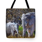 Mama And Baby Elephant Tote Bag