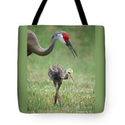 Mama And Juvenile Sandhill Crane Tote Bag by Carol Groenen