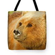 Mama Bear Close Up Tote Bag