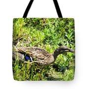 Mama Duck On Guard Tote Bag