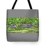 Mama Gator With Babies Tote Bag