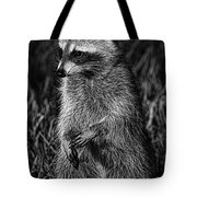 Mama Raccoon Tote Bag