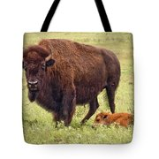 Mama Watching Over Baby Tote Bag by Tamyra Ayles