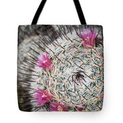 Mammillaria Cactus With Small Flowers Tote Bag