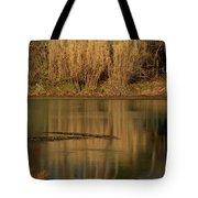 Mammoth Spring Arkansas Tote Bag