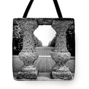 Man Frames Nature Tote Bag