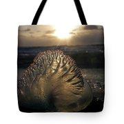 Man-o-war Sunrise II Tote Bag