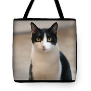 Man Of The House Tote Bag