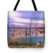 Manasquan Sunrise Tote Bag