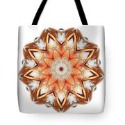 Mandala - Talisman 1620 Tote Bag