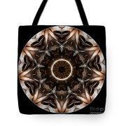 Mandala - Talisman 3706 Tote Bag