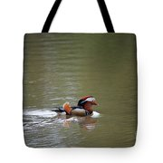 Mandarin Duck 20130507_41 Tote Bag