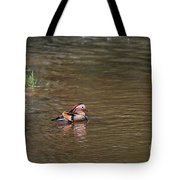 Mandarin Duck 20130508_314 Tote Bag
